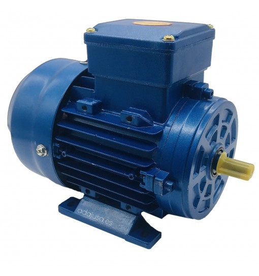 Motor Three-Phase Asynchronous 1,0 C.v